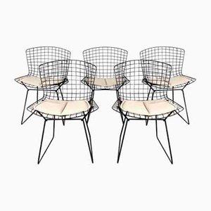 Esszimmerstühle von Harry Bertoia für Knoll Inc. / Knoll International, 1970er, 5er Set