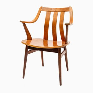 Mid-Century Plywood & Beech Armchair from Pastoe