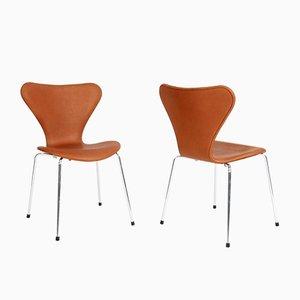 Mid-Century Modell 3107 Esszimmerstuhl von Arne Jacobsen für Fritz Hansen