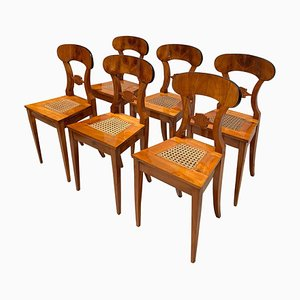 Antique Austrian Biedermeier Cherry Veneer Board Chairs, Set of 6, 1830s