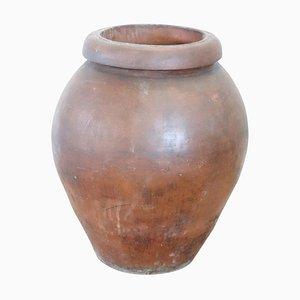 Grand Pot de Jardin en Terracotta, années 30