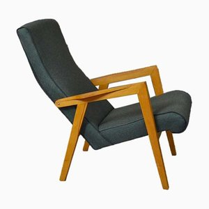 Lounge Chair by Lygija Marija Stapulionienė, 1960s