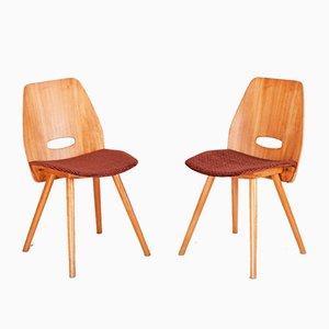Mid-Century Czech Side Chairs by František Jirák for Tatra, 1950s, Set of 5