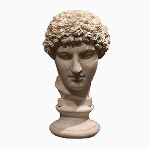 Antique Italian Neoclassical Plaster Antinous Bust