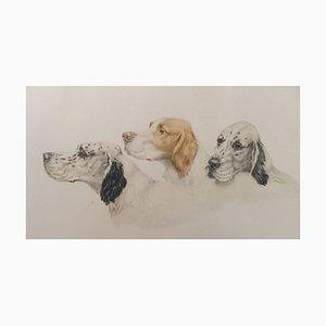 Aguafuerte Aguatinta de perros de Leon Danchin, años 30