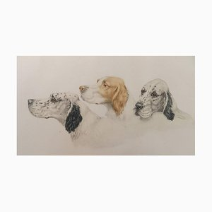 Radierung Aquatinta von Hunden von Leon Danchin, 1930er