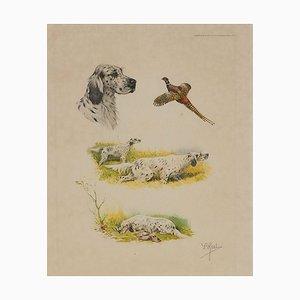 Aquatinte de Chiens de Travail et Faisan par Boris Riab, années 30