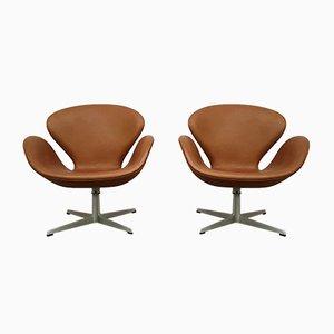 Cognacfarbene Anilinleder Swan Chairs von Arne Jacobsen für Fritz Hansen, 1966, 2er Set