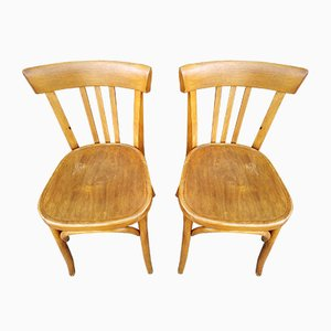 Dining Chairs from Fishel, 1950s, Set of 4
