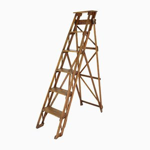 Antique Step Ladder from Hatherley