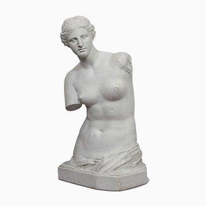Large Vintage Plaster Female Bust