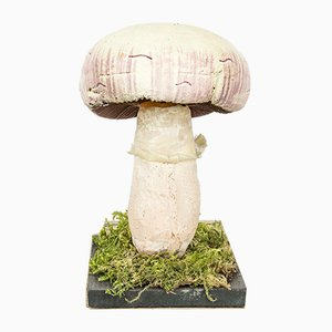 Vintage Scientific Mushroom Model