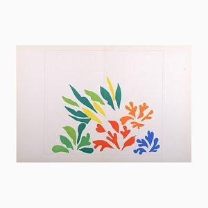 Litografía Acanthes de Henri Matisse, 1958