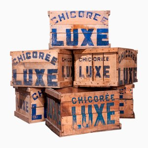 Wooden Chicoree Luxe Storage Crate, 1940s