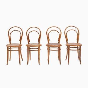 Chaise de Salon Antique en Bois Courb