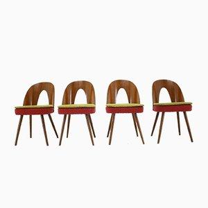 Esszimmerstühle von Antonín Šuman, 1960er, Set of 4