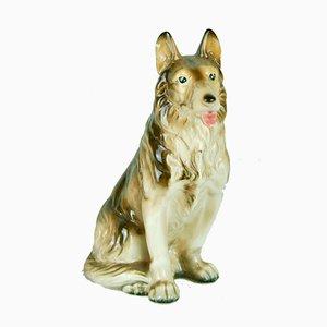 Keramik Hund, 1960er