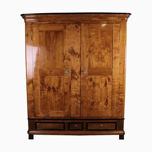 Biedermeier Cherrywood Cabinet with Pedestal Drawers, 1850s