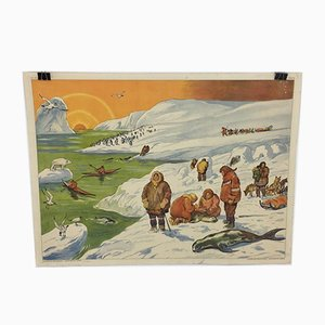 Vintage French Rossignol Editions Arctic Wall Chart, 1960s