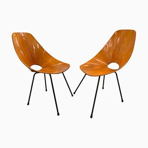 Medea Chairs by Vittorio Nobili, 1960s, Set of 2