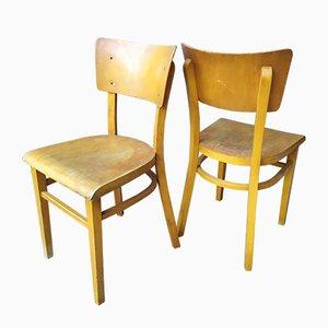 Esszimmerstühle von Michael Thonet für Thonet, 1950er, 4er Set