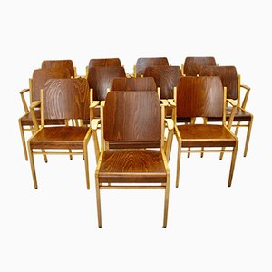Mid-Century Austrian Stackable Armchairs by Franz Schuster, Set of 12