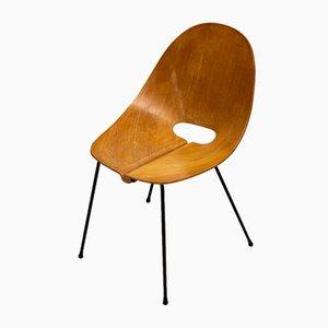 Esszimmerstühle von Carlo Ratti für Societa Compensati Curvata, 1950er, 6er Set