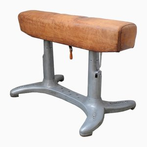 Vintage Dutch Pommel Horse from Goes