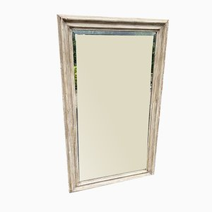 Antique French Carved Wood & Gesso Plain Mirror