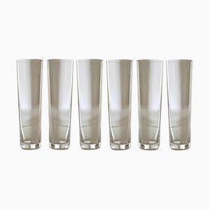 Copas de champán de cristal de Deborah Ehrlich. Juego de 6