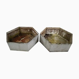 Large Hexagon Shaped Planters by Willy Guhl, 1960s, Set of 2