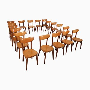 French Wooden Bistro Chairs, 1950s, Set of 20