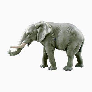 Large German Porcelain Elephant Figurine by Karl Ens