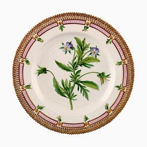 Flora Danica Dinner Plate 20/3549 from Royal Copenhagen, 20th Century