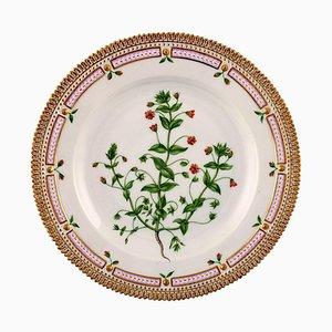 Flora Danica Dinner Plate 20/3549 from Royal Copenhagen, 1951