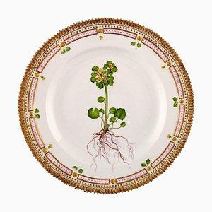 Flora Danica Dinner Plate 20/3549 from Royal Copenhagen, 1962