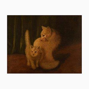 Huile sur Chats 2 Blancs par Arthur Heyer, Début 20ème Siècle
