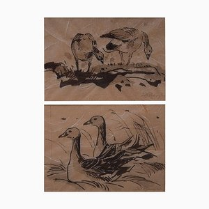 Two Bird Studies by Leif Rydeng, 1961