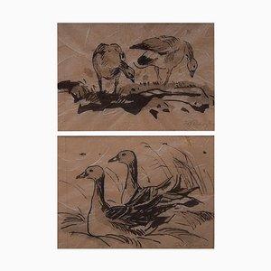 Two Bird Studies von Leif Rydeng, 1961