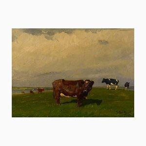 Cows on the Field Oil on Canvas by Gunnar Bundgaard