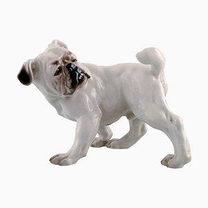 Number 1992 English Bulldog from Bing & Grondahl, 20th Century
