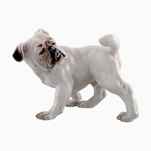 Numéro 1992 Bulldog de Bing & Grondahl, Angleterre, 20ème Siècle