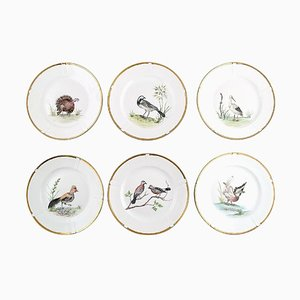 Hand-Painted Plates with Bird Motifs from Bing & Grondahl, 1930s, Set of 6