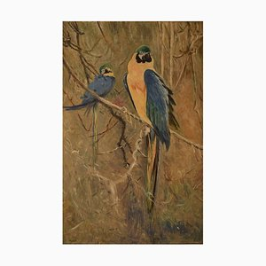Französische Papagei Öl auf Leinwand, 1929