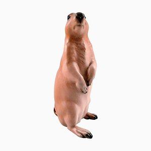 Rare Royal Copenhagen Marmot Number 1095