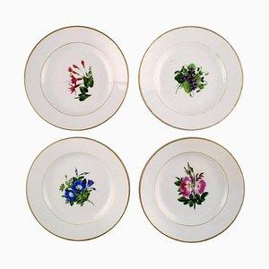 Antique Royal Copenhagen Flat Plates in Flora Danica Style, Set of 4