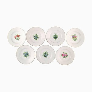 Antique Royal Copenhagen Plates in Flora Danica Style, Set of 7