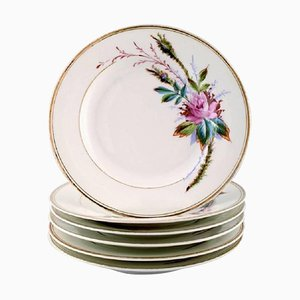 Antique Royal Copenhagen Plates Hand-Decorated with Flowers, Set of 6