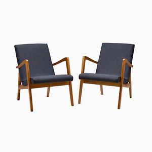 300-138 Armchairs from Bystrzyckie Fabryki Mebli, 1960s, Set of 2