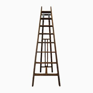 Antique Library Step Ladder